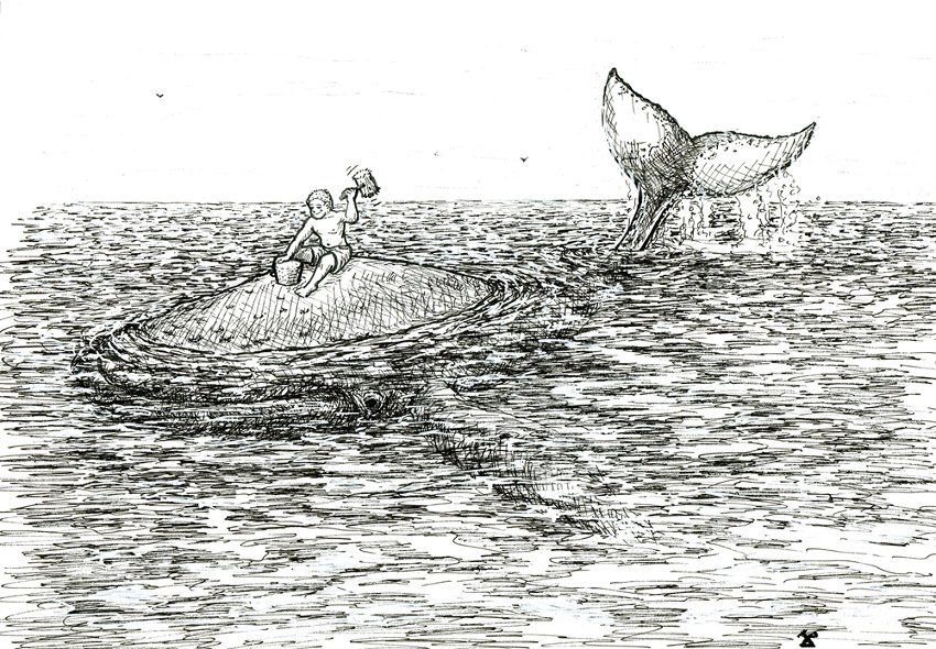 tepee-160922-baleine-marteau-resized
